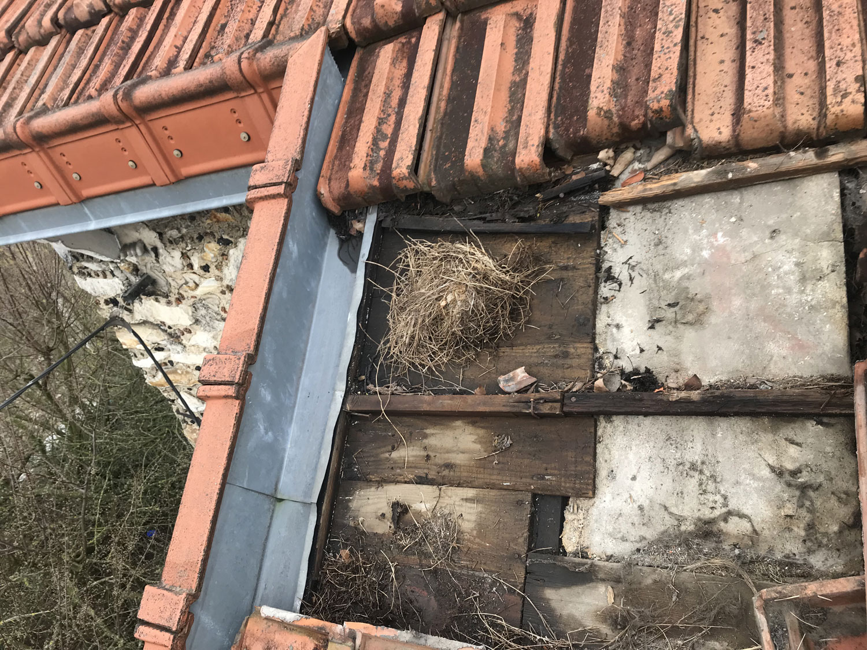 Avis sur devis isolation et rénovation toit