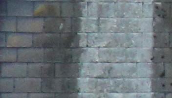 URGENT toiture ardoise qui blanchit ? c'est grave ?