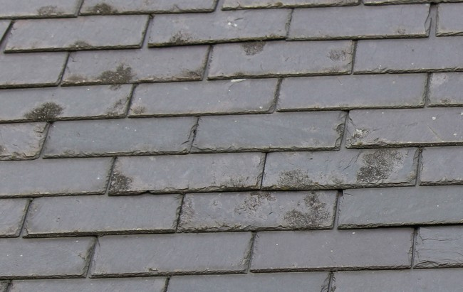 Avis sur l'état d'une toiture en ardoises